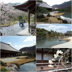 日本2017 : mercredi 22mars – Kyoto mon amour