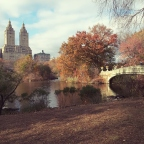 USA 2019 : 19 – 23 novembre, New York